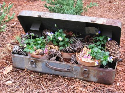 Rusty metal box found curbside. Now holding natural elements welcoming everyone by front sidewalk.